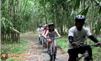 Bali Countryside Cycling Tour - Unique Bali's Cycling Track - Ride Through Bamboo Forest | Visiting Magical Village Penglipuran | Visiting Kehen temple | Rice Paddies Tracking | Mini Lake Route Track
